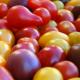 Tomates cerises 500 g