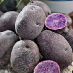 Pomme de terre Ulysse 1 kg (chair tendre)